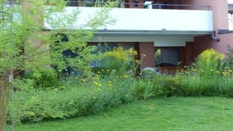 Erdgeschosswohnung mit geschützter Sonnenterrasse auf großem Grundstück